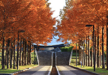 日本へそ公園