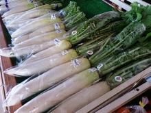 11月 冬野菜登場
