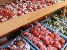 7月の野菜 トマト
